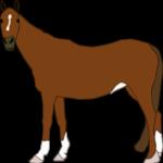 Pferd auf Thailändisch