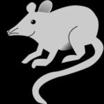 Maus auf Thailändisch